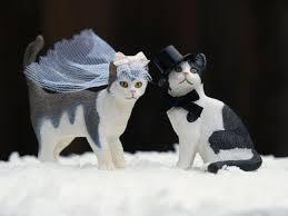 Cat Wedding Cake Topper Bride & Groom Animal Lover Kitty