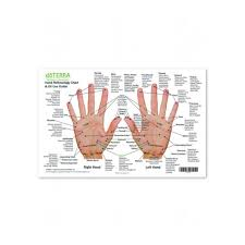 Hand Foot Reflexology Chart And Oil Use Guide