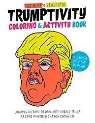 political coloring books donald trump hillary clinton and even bernie