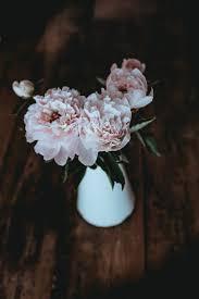 750+ <b>Flower Vase</b> Pictures [HD] | Download Free Images on Unsplash