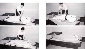Реферат на тему Медицина Оздоровление и единоборства kappo  Скорая помощь first aid
