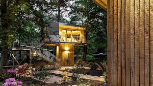 The 25 Best Treehouse Hotel Ideas On Pinterest  Amazing Tree Treehouse Hotel Africa