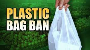 ban on plastic bag essay research paper service ban on plastic bag essay