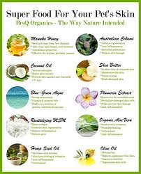 Amazon.com : ResQ Organics Pet Skin Treatment 4oz - Effective Hot ...
