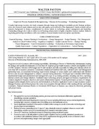Resume Templates Executive Summary Finance Awful Project Manager