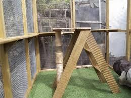 best outdoor cat tree house