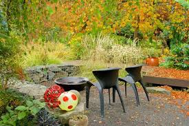 7 Easy Fall Gardening Tips For Your Monarch Butterfly GardenFall Gardening