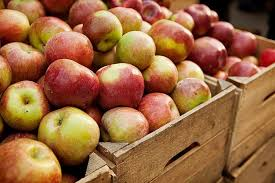 Fruits And Vegetables In Season In Fall