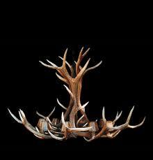 chandeliers antler lighting for chandelier montana deer uk ontario next mule reion canada small craigslist