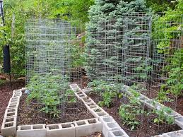 Small Picture Unique Small Backyard Vegetable Garden Ideas Vegetable Garden
