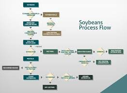 Soybean Oil Chart Soybean Oil Healthy Or Harmful Inflammation Soy