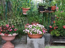 Image titled Maintain a Planter Step 1