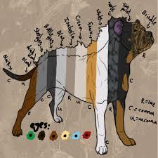 Dog Color Chart Rumi Sonqo Dog Colour Chart Weasyl