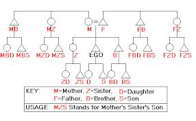 Anthropology Genealogy Chart Kin Terms Pt 2