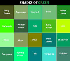 Forest Green Color Chart Shades Of Green In 2019 Green Color Chart Green Color