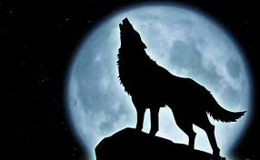 howling wolf moon drawing. Fine Wolf Howling Wolf Moon  Photo2 Throughout Wolf Moon Drawing