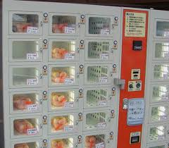 Vending Machine Japan Used Underwear Interesting The 48 Strangest Things You Can Buy In A Japanese Vending Machine