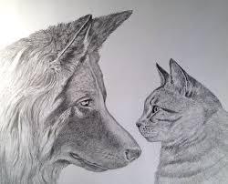 Disegni Di Animali A Matita Sg99 Pineglen Con Disegni Di Animali A