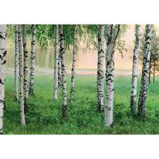 nordic forest wall mural dm290 the home depot
