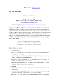 100 Sample Resume For Sales Executive 100 Resume Examples
