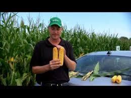 Quilt Xcel Fungicide Early (V4-V8) Benefits Corn - YouTube & Quilt Xcel Fungicide Early (V4-V8) Benefits Corn Adamdwight.com
