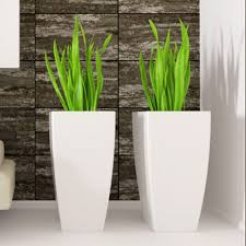 Interior landscaping office Shopping Mall Interior Based In Southern New Jersey And Servicing The Philadelphia Region Ipc Is Privatelyowned Interior Landscaping Company Serving Commercial Properties With Plants Office Plants Plant Rental Dublin Irelandhire Office Plants Home Interior Plant Creations