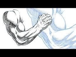 drawing and shading a muscular arm ic book style sketchbook pro 8 you