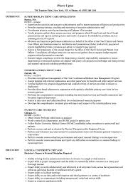 Patient Care Resume Examples Patient Care Resume Samples Velvet Jobs 19
