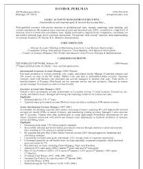 Account Manager Resume Resume For Your Job Application