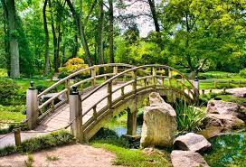 a japanese garden bridge