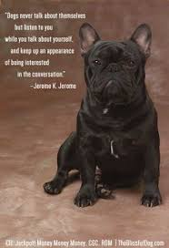 French Bulldog Quotes on Pinterest | Funny Chihuahua Quotes, Funny ... via Relatably.com
