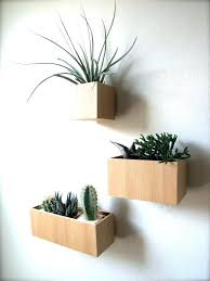 wall plant pots wall mounted plants bold design ideas wall plant holders impressive decoration images about wall plant pots