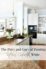 Should I Paint My Kitchen Cabinets White New Inspiration