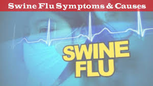 swine flu se bachna hai to apnaiye ye precautions