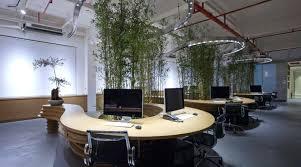 modern office plants. Modern Office Plants Interior Plant Design Desk  .