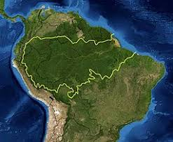 amazon rainforest. Perfect Rainforest Amazon Rainforest In Rainforest R
