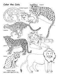 Small Picture Family And Cat Coloring Pages Coloring Coloring Pages