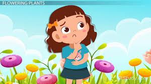 flowering nonflowering plants lesson