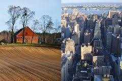 city life vs country life comparison essay art papers sylvie city life vs country life comparison essay