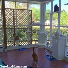 cats on the cat porch