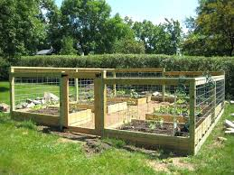 raised garden layout innovative making a raised bed for vegetables raised bed vegetable garden layout photo