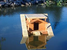 Floating House Plans Diy Floating Duck House Plans House Best Design