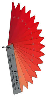 Salmofan Color Chart Edward Tufte Forum What Color Is Your Salmon Flamingo