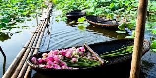 Image result for hinh anh khu du lich