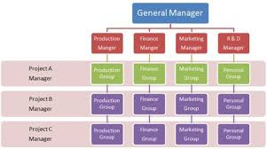Collaborative Organizational Chart The Different Types Of Organizational Charts And Why Each Is