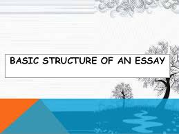 how to write a basic paragraph 5 basic