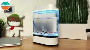 Обзор <b>Xiaomi</b> Geometry Mini Lazy <b>Fish</b> Tank: дизайн <b>аквариума</b> ...