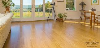 Cali bamboo flooring prices Stairs Get Free Samples Cali Bamboo Solid Bamboo Flooring Natural Fossilized Strand Cali Bamboo