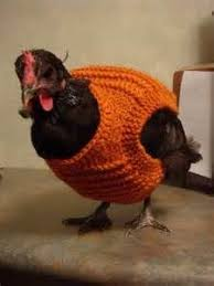 Chicken Sweater Pattern Mesmerizing 48 Best Crochet Patterns Images On Pinterest Crochet Batwing Tops