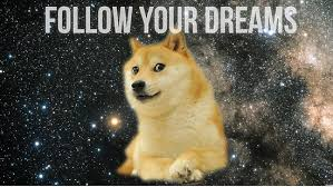 doge follow your dreams. Beautiful Dreams Doge Follow Your Dreams And Redbubble